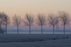 Foto gemaakt door Nieske Brouwer